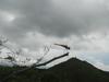 Hiking Tin Shui Wai - 頁 14 46f148942619754