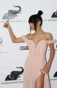 Bai Ling -              	''Tusk After Dusk Benefit for WildlifeSOS'' Hollywood November 4th 2017.
