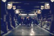 Люди Икс 2 / X-Men 2 (Хью Джекман, Холли Берри, Патрик Стюарт, Иэн МакКеллен, Фамке Янссен, Джеймс Марсден, Ребекка Ромейн, Келли Ху, 2003) 7a1c061208774914