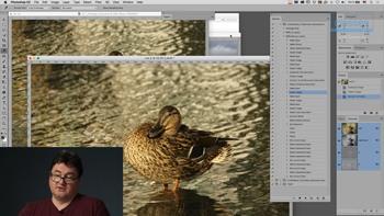 Adobe Photoshop: написание экшенов. Практика применения (2019) Мастер-класс