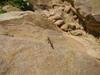 Hiking Tin Shui Wai - 頁 14 796e9c924966044