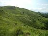 Hiking Tin Shui Wai - 頁 14 Bd3bcd924863794