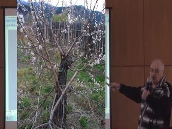 Ваш плодовый сад от А до Я (2016) Видеокурс