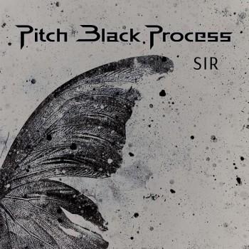 Pitch Black Process, Hayko Cepkin - Zahid Bizi Tan Eyleme (2019) Single Albüm İndir