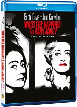 Che fine ha fatto Baby Jane? (1962) BD-Untouched 1080p AVC DTS HD ENG AC3 iTA-ENG