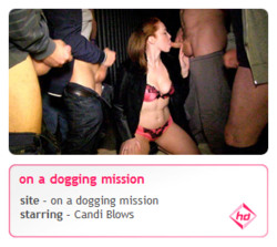 Candi Blows - On A Dogging Mission    Release