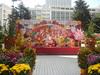 新春舞獅 2009 E662d4752564673