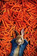 Приключения Кролика Питера / Peter Rabbit (2018)  F55e22816385743
