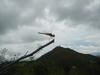 Hiking Tin Shui Wai - 頁 14 Ab98e1942637124