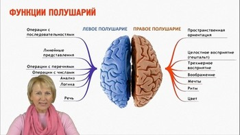 Здоровый и функциональный мозг в любом возрасте (2018) Видеокурс