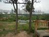 Hiking Tin Shui Wai - 頁 14 6059f4909212194