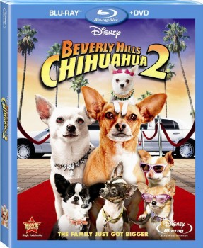 Beverly Hills Chihuahua 2 (2011) BD-Untouched 1080p AVC DTS HD ENG DTS iTA AC3 iTA-ENG