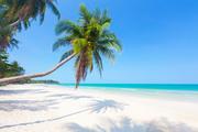 Тропический остров и пляж / Beautiful tropical island and beach Cfbc4b1190116914