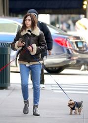 Emmy Rossum - Walking her dogs in NYC 1/24/19