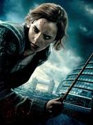 Гарри Поттер и Дары Смерти: Часть первая / Harry Potter and the Deathly Hallows: Part 1 (Уотсон, Гринт, Рэдклифф, 2010) 9486b01227121424