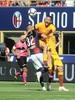 фотогалерея AS Roma - Страница 15 Bcf8fc983576074