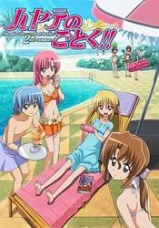 旋风管家OVA:泳装篇 ハヤテのごとく!! アツがナツいぜ 水着編!