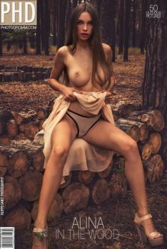 Aya Beshen | Alina Alina - In The Wood