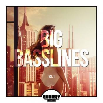 Big Basslines Vol. 1 (2019) Full Albüm İndir