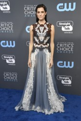 Allison Williams - The 23rd Annual Critics' Choice Awards in Santa Monica 1/11/18