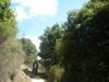 Hiking 2012 June 16 - 頁 4 Be4c1f875689524