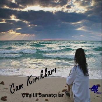 Çeşitli Sanatçılar - Cam Kırıkları (2019) Full Albüm İndir