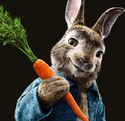 Приключения Кролика Питера / Peter Rabbit (2018)  1a8cfc816385823