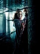 Гарри Поттер и Дары Смерти: Часть первая / Harry Potter and the Deathly Hallows: Part 1 (Уотсон, Гринт, Рэдклифф, 2010) B016391227121984
