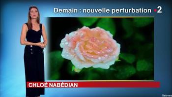 Chloé Nabédian - Août 2018 48a9e8948077664