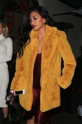 Nicole Scherzinger - Out for dinner in West Hollywood 1/3/19