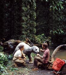 Динозавр: Тайна затерянного мира / Baby: Secret of the Lost Legend/ (1985) Шон Янг 802bfd859587674