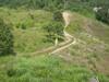 Hiking Tin Shui Wai - 頁 14 411ada924872174