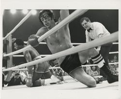 Рокки 2 / Rocky II (Сильвестр Сталлоне, 1979) - Страница 2 Cd8182882215894