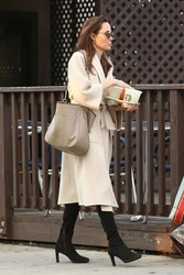 Angelina Jolie - Shopping in Studio City 3/11/18