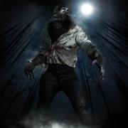 Человек волк / The Wolfman (Бенисио Дель Торо, Эмили Блант, 2010) 10d3a61230362664