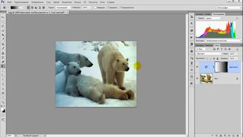 Азбука коррекции фотографий. Технология процесса (2018) Вебинар