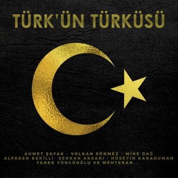 Çeşitli Sanatçılar - Türk'ün Türküsü (2019) Full Albüm İndir