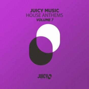Juicy Music Presents House Anthems Vol. 7 (2019) Full Albüm İndir