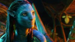 Аватар / Avatar (Сэм Уортингтон, Зои Салдана, Сигурни Уивер, 2009) F0d0091091452894