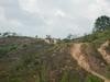 Hiking Tin Shui Wai - 頁 14 678f31909209064