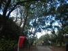 Hiking 2012 June 16 - 頁 4 0ba42a875622124