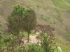 Hiking Tin Shui Wai - 頁 14 3654d0909204094