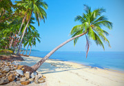 Тропический остров и пляж / Beautiful tropical island and beach 444cc61190116284