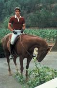 Фэлкон Крест / Falcon Crest (сериал 1981 – 1990) 1036141354570396