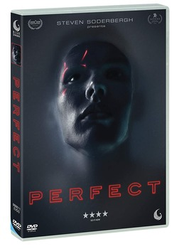 Perfect (2018) DVD9 COPIA 1:1 ITA ENG