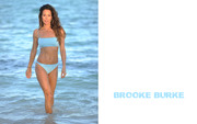 Brooke Burke : Hot Wallpapers x 9