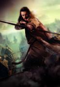 Хоббит Пустошь Смауга / The Hobbit The Desolation of Smaug (2013) 9be3cd1356376287