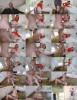 Chloe Carter - Exxxtrasmall Groupie Love (2020 Exxxtrasmall.com TeamSkeet.com) [HD   720p  1.06 Gb]