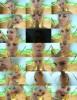 DeNata - Amateur (2020 PornHub.com) [FullHD   1080p  185.13 Mb]