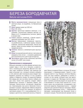 Подарочные издания. Красота и здоровье в 15 книгах (2011-2019) PDF, FB2
